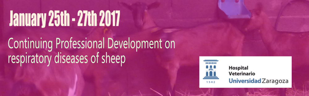 Positive feedback from first Professional Development Course on respiratory diseases of sheep.