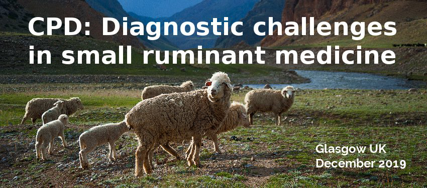 New CPD – Diagnostic challenges in small ruminant medicine
