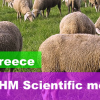 2018 ECSRHM annual meeting – Greece