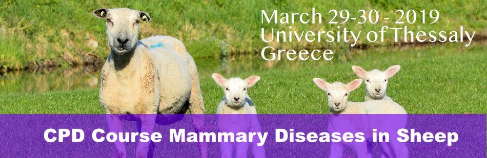 CPD Course Mammary Diseases in sheep