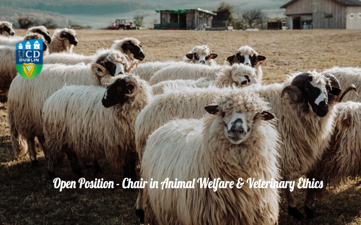 Open Position – Chair in Animal Welfare & Veterinary Ethics
