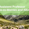 Two Open Positions Assistant Professor