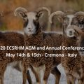 Update -2020 AGM and ECSRHM Annual Conference in Italy