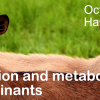 CPD for residents on nutrition and metabolic diseases of small ruminants