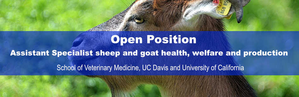 Open position: Assistant Specialist sheep and goat health, welfare and production.