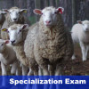 ECSRHM Spezialization Exam – Warsaw October 2018